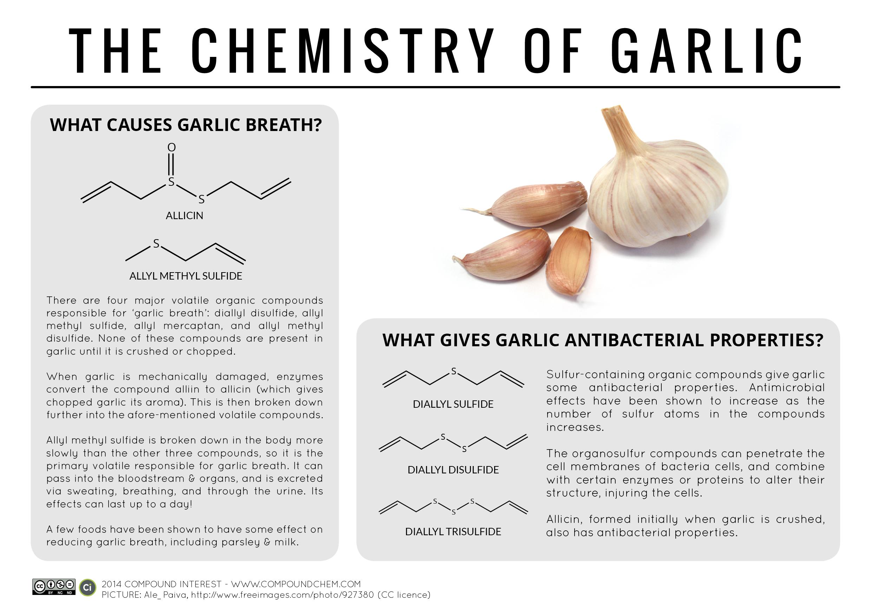 The-Chemistry-of-Garlic