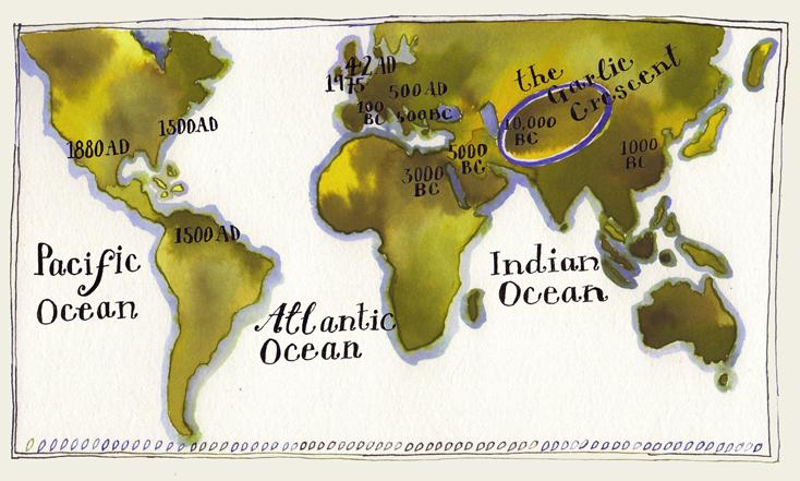 garlic-world-map